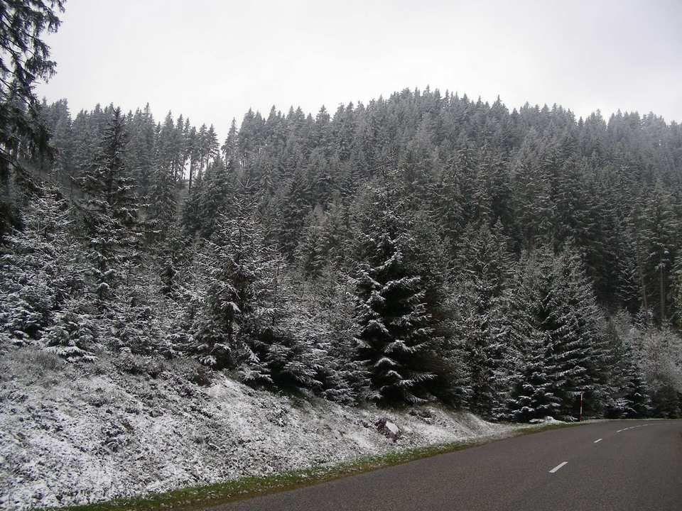 Nous aurions pu voir de nombreux lacs Les Ballons dAlsace Toute la plaine dAlsace Et par beau temps la forêt Noire en Allemagne Mais voilà la météo capricieuse De cette fin octobre nous a offert Notre première neige.