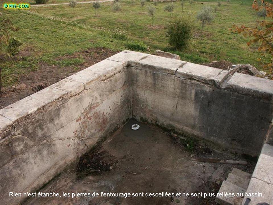 Rien n est étanche, les pierres de l entourage sont descellées et ne sont plus reliées au bassin.