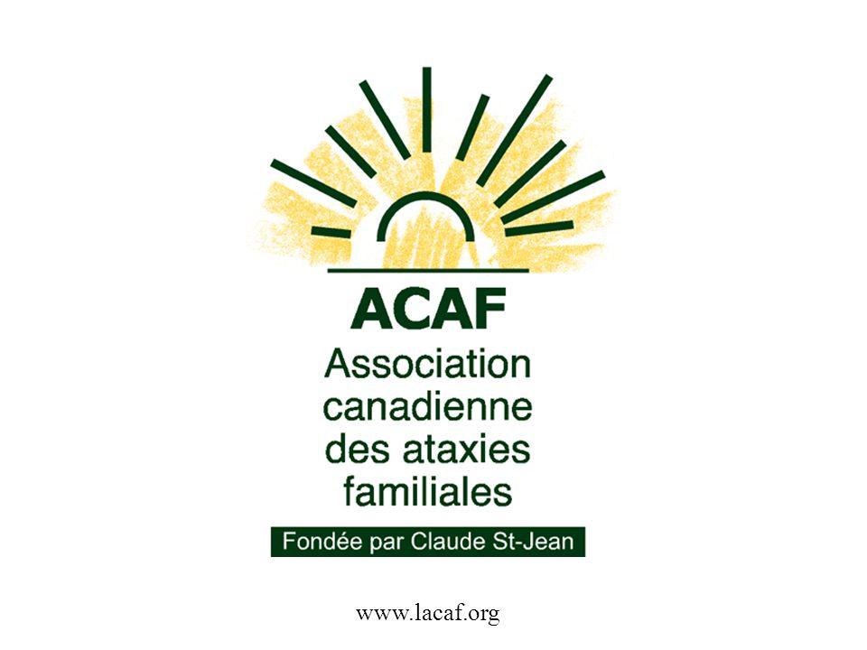 www.lacaf.org
