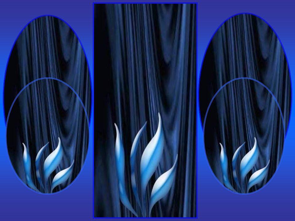 Même si, la foudre du Ciel dans vos épreuves vous rend parfois …vulnérable… Vous connaîtrez une lumière aveuglante de triomphe… Votre éternel ombre rendra votre âme immuable… Croyez à un ultime et providentiel Royaume… Bientôt il deviendra définitivement le vôtre…!!!