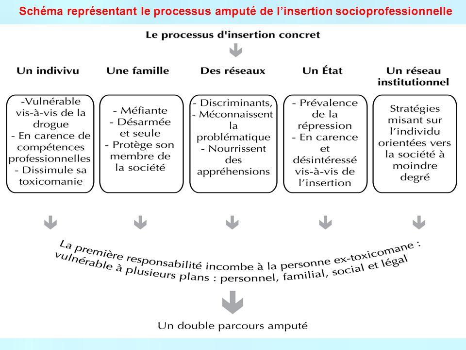 Schéma représentant le processus amputé de linsertion socioprofessionnelle