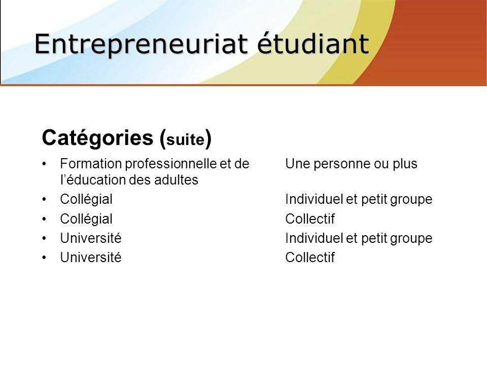 Catégories ( suite ) Formation professionnelle et de Une personne ou plus léducation des adultes CollégialIndividuel et petit groupe CollégialCollectif UniversitéIndividuel et petit groupe UniversitéCollectif Entrepreneuriat étudiant