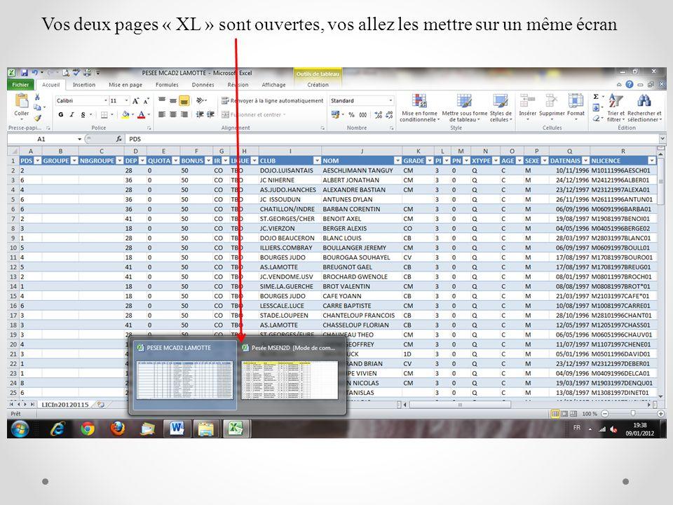 Vos deux pages « XL » sont ouvertes, vos allez les mettre sur un même écran