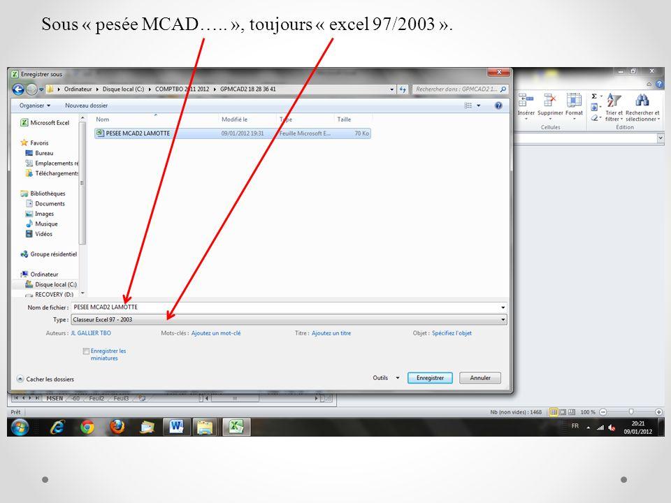 Sous « pesée MCAD….. », toujours « excel 97/2003 ».