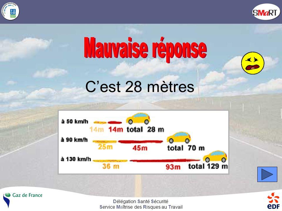 Délégation Santé Sécurité Service Maîtrise des Risques au Travail 28 mètres