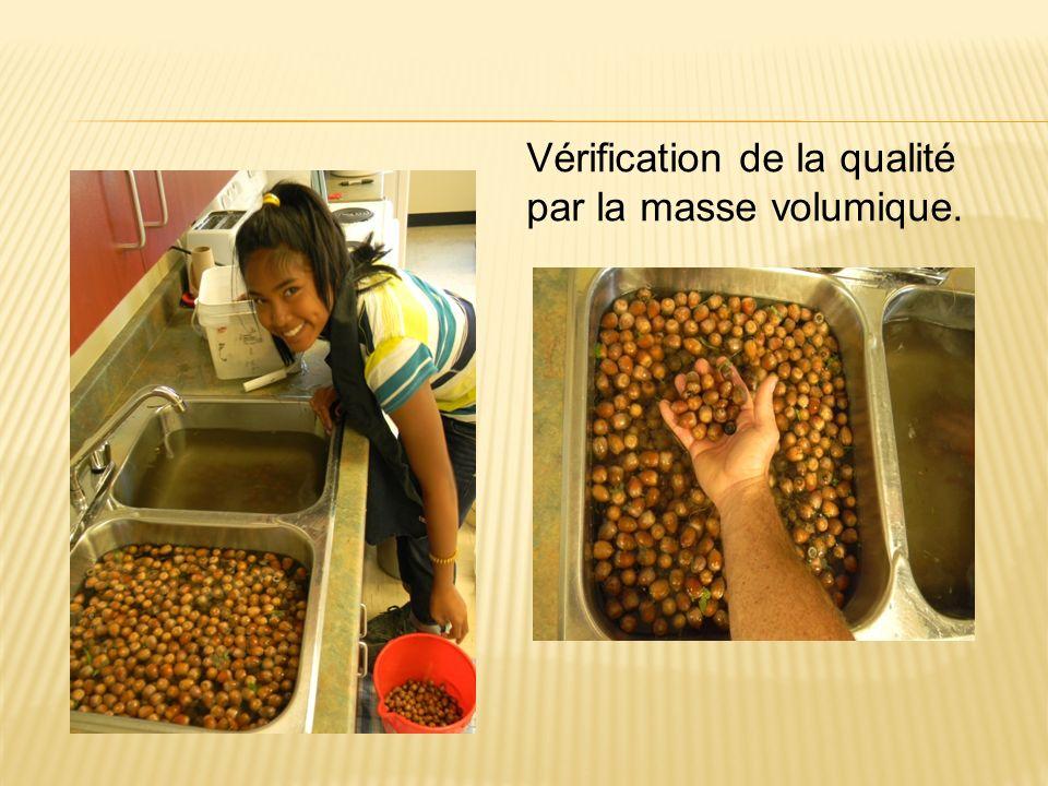 Vérification de la qualité par la masse volumique.