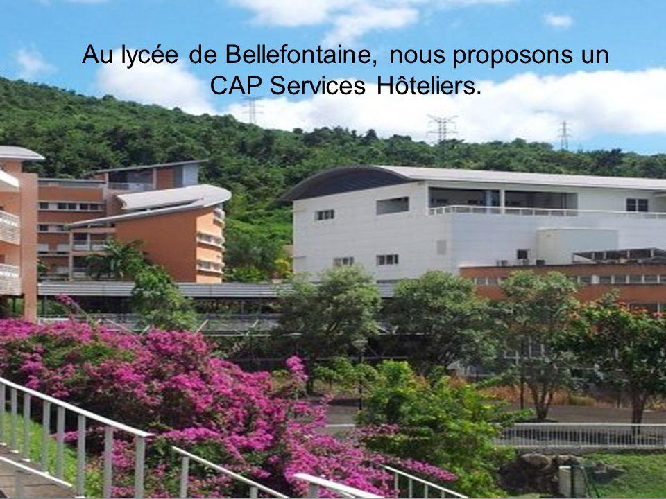 Au lycée de Bellefontaine, nous proposons un CAP Services Hôteliers.