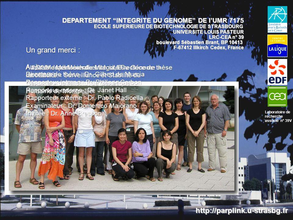 A tout le département « Intégrité Du Génome » de lESBS : http://parplink.u-strasbg.fr DEPARTEMENT INTEGRITE DU GENOME DE lUMR 7175 ECOLE SUPERIEURE DE