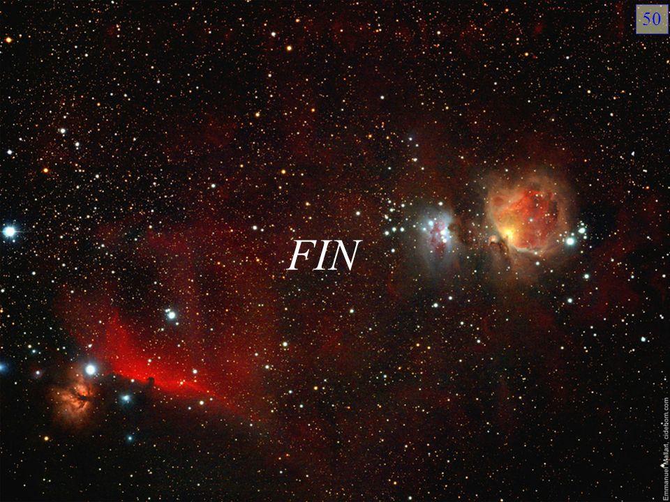 FIN 50