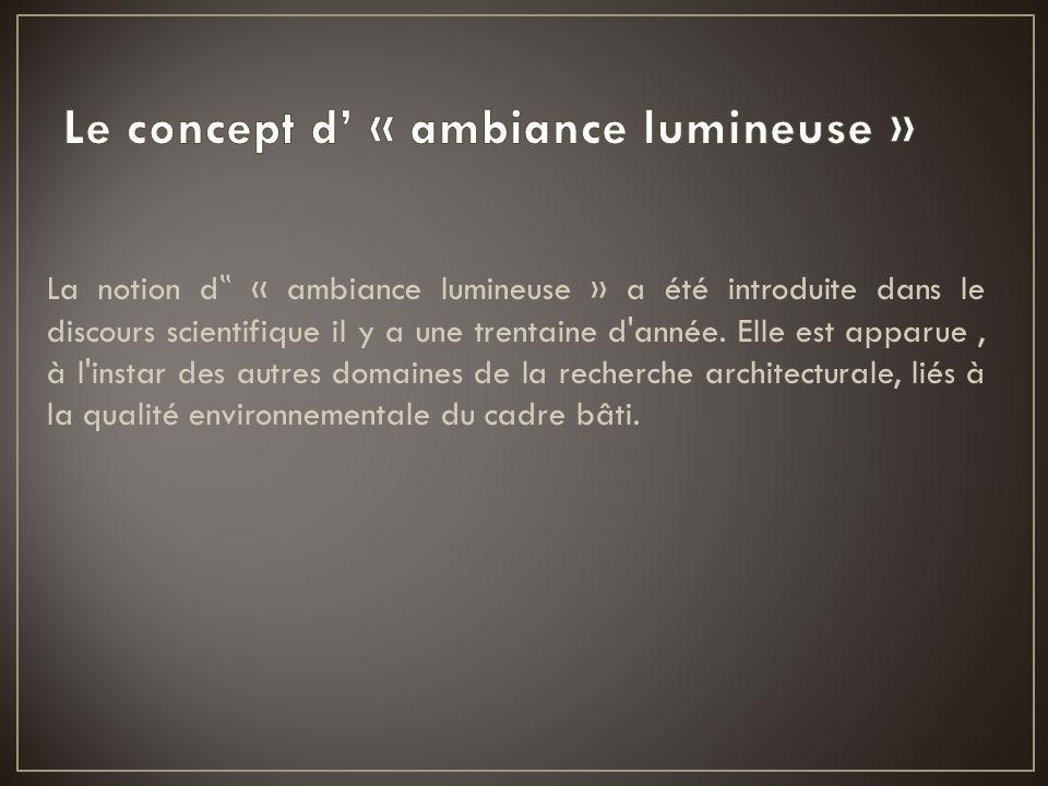 La notion d « ambiance lumineuse » a été introduite dans le discours scientifique il y a une trentaine d'année. Elle est apparue, à l'instar des autre
