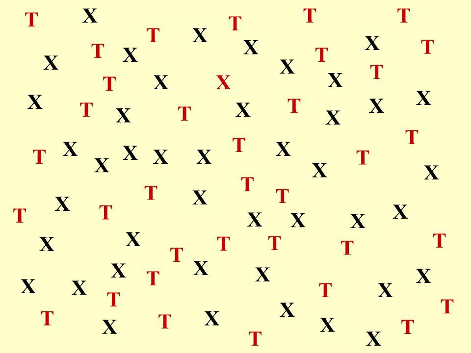 T X T X X X X T T T T X X X X T T T T X X X X T T T T X X X X T T T T X X X X T X T X X X XT X X X T X X X X T X X X X X X X X X X X T T T T T T T T T