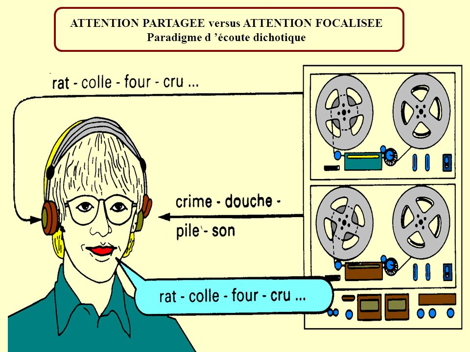 ATTENTION PARTAGEE versus ATTENTION FOCALISEE Paradigme d écoute dichotique
