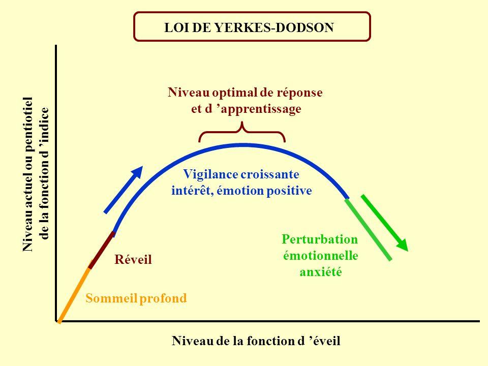 LOI DE YERKES-DODSON Niveau optimal de réponse et d apprentissage Réveil Sommeil profond Niveau de la fonction d éveil Niveau actuel ou pentiotiel de