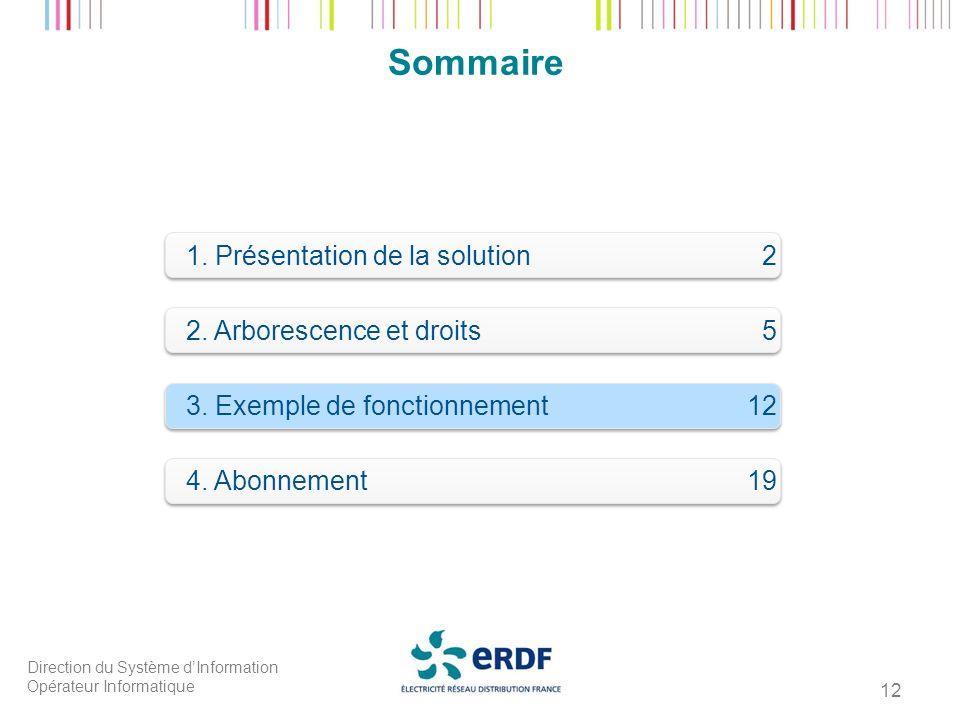 Direction du Système dInformation Opérateur Informatique 12 Sommaire 1. Présentation de la solution 2 2. Arborescence et droits 5 3. Exemple de foncti