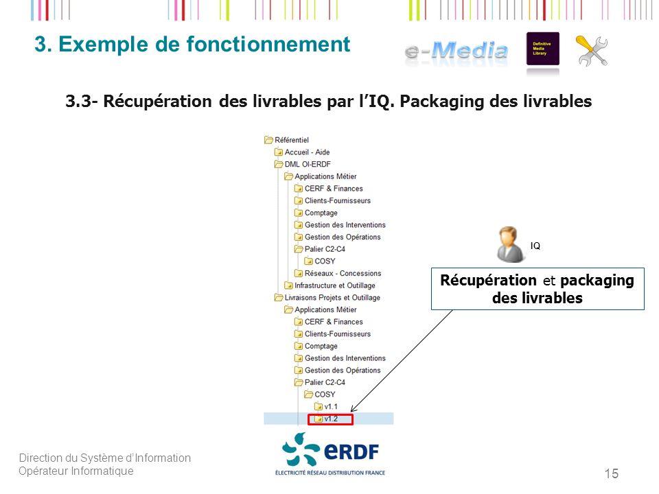 Direction du Système dInformation Opérateur Informatique 15 3. Exemple de fonctionnement 3.3- Récupération des livrables par lIQ. Packaging des livrab
