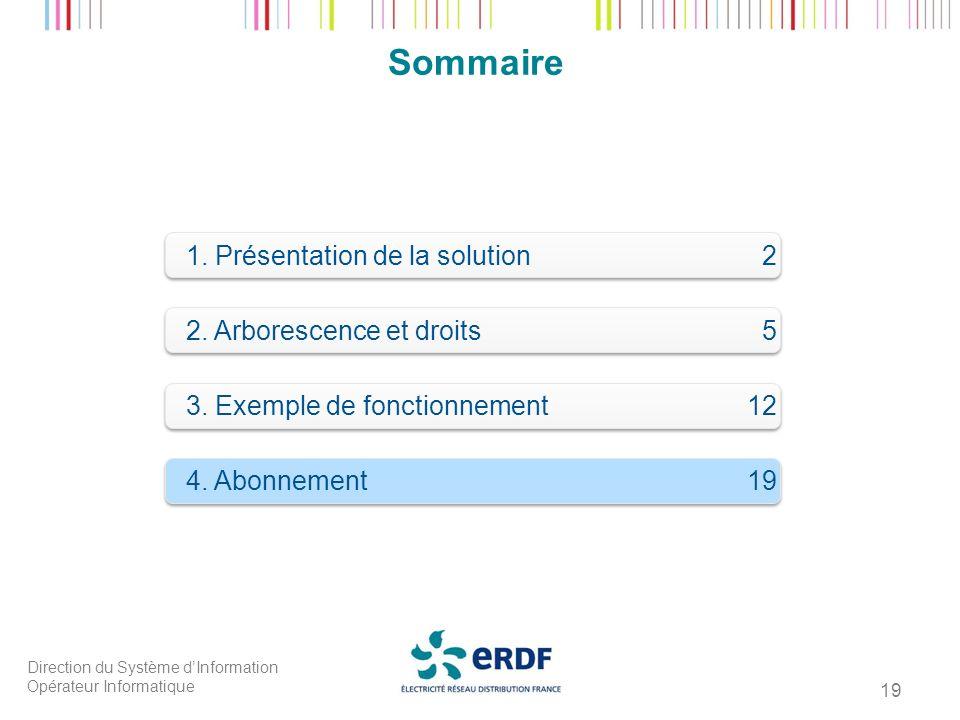 Direction du Système dInformation Opérateur Informatique 19 Sommaire 1. Présentation de la solution 2 2. Arborescence et droits 5 4. Abonnement19 3. E