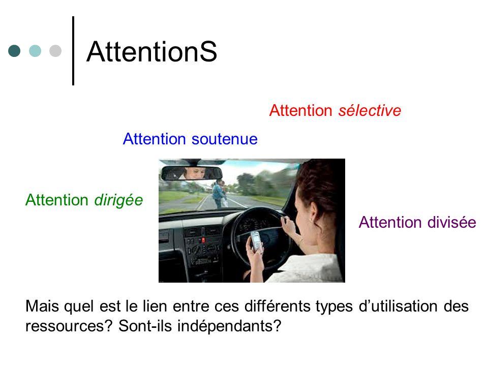 AttentionS Attention soutenue Attention dirigée Attention sélective Attention divisée Mais quel est le lien entre ces différents types dutilisation de