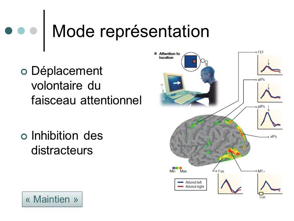 Mode représentation Déplacement volontaire du faisceau attentionnel Inhibition des distracteurs « Maintien »