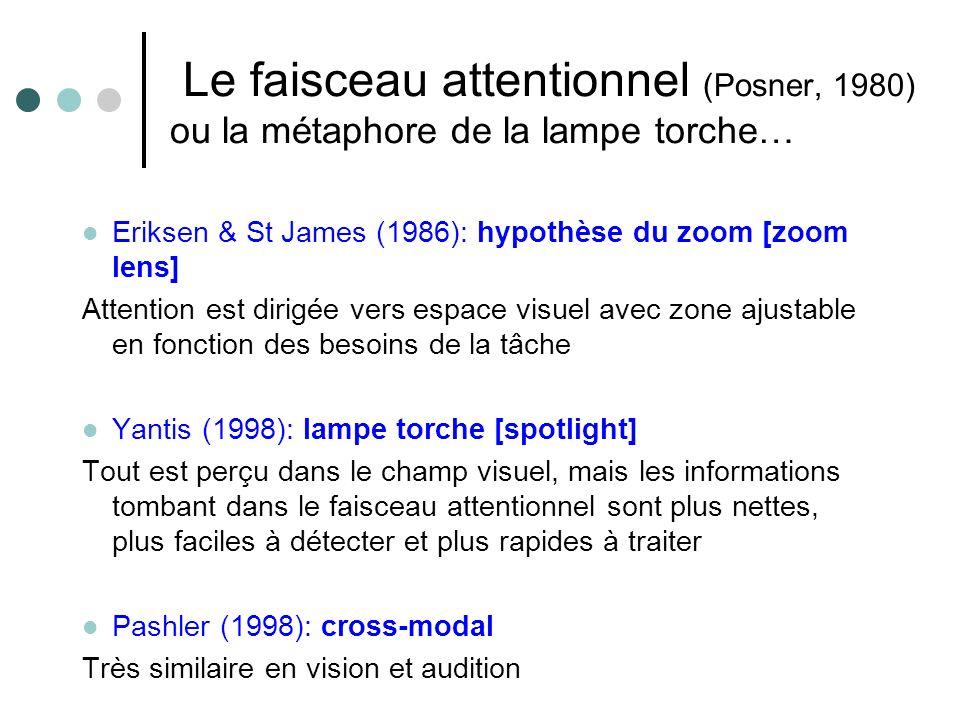 Le faisceau attentionnel (Posner, 1980) ou la métaphore de la lampe torche… Eriksen & St James (1986): hypothèse du zoom [zoom lens] Attention est dirigée vers espace visuel avec zone ajustable en fonction des besoins de la tâche Yantis (1998): lampe torche [spotlight] Tout est perçu dans le champ visuel, mais les informations tombant dans le faisceau attentionnel sont plus nettes, plus faciles à détecter et plus rapides à traiter Pashler (1998): cross-modal Très similaire en vision et audition