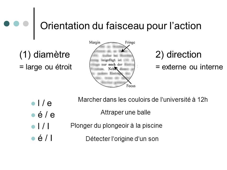 Orientation du faisceau pour laction (1) diamètre(2) direction = large ou étroit = = externe ou interne l / e é / e l / I é / I Marcher dans les couloirs de luniversité à 12h Plonger du plongeoir à la piscine Attraper une balle Détecter lorigine dun son