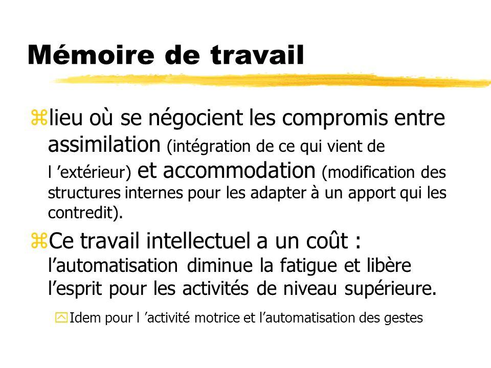 Mémoire de travail zlieu où se négocient les compromis entre assimilation (intégration de ce qui vient de l extérieur) et accommodation (modification