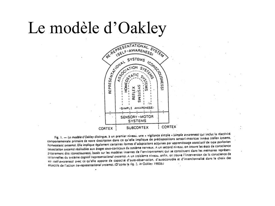 Le modèle dOakley