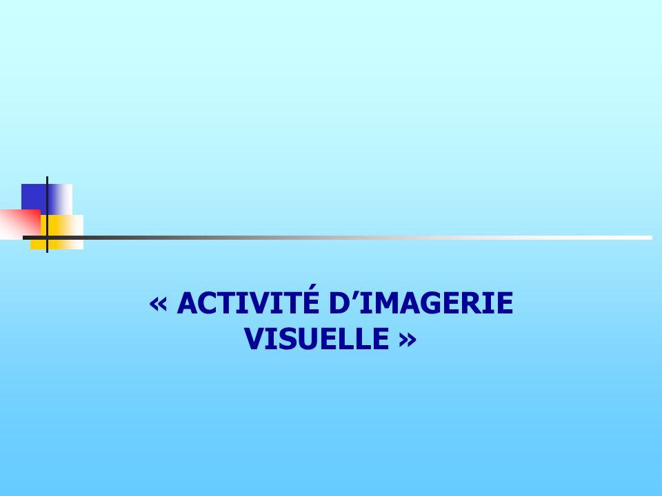 « ACTIVITÉ DIMAGERIE VISUELLE »