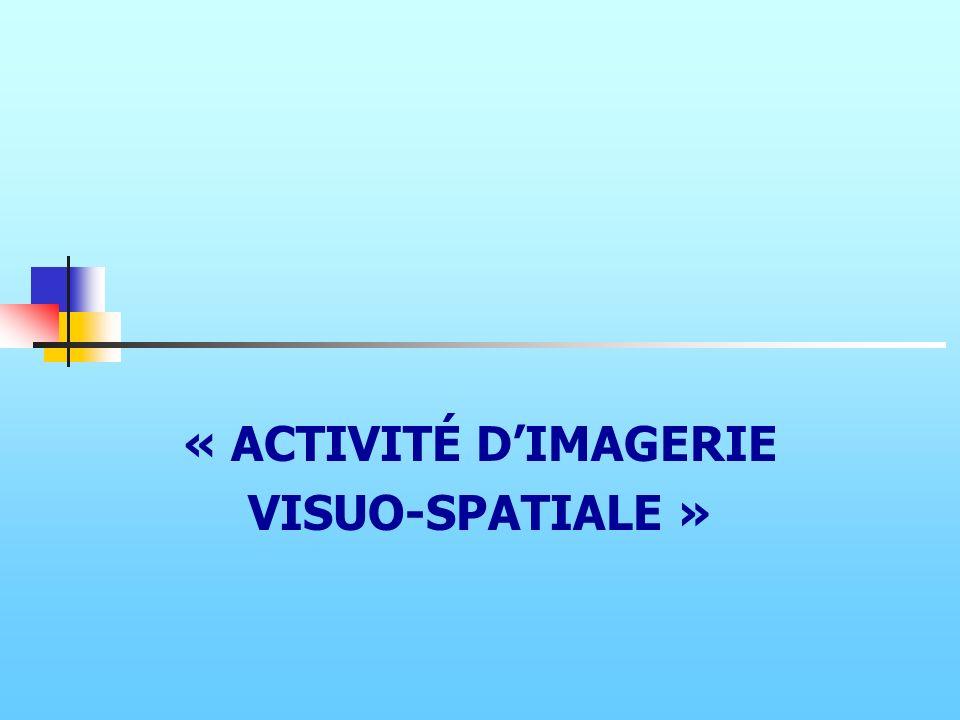 « ACTIVITÉ DIMAGERIE VISUO-SPATIALE »