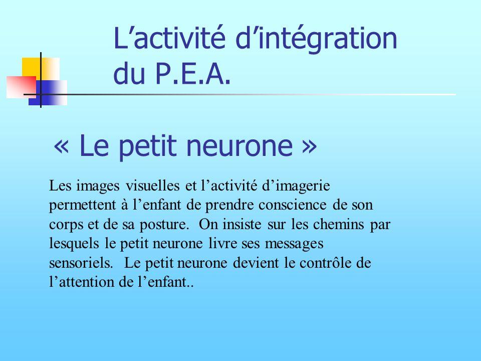 Lactivité dintégration du P.E.A. Les images visuelles et lactivité dimagerie permettent à lenfant de prendre conscience de son corps et de sa posture.