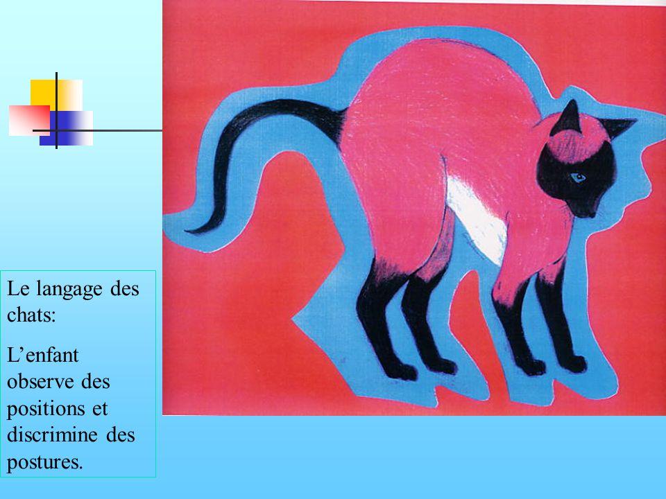 Le langage des chats: Lenfant observe des positions et discrimine des postures.