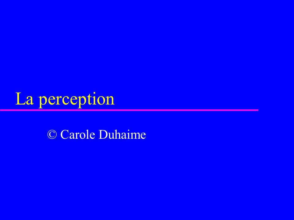 La perception © Carole Duhaime