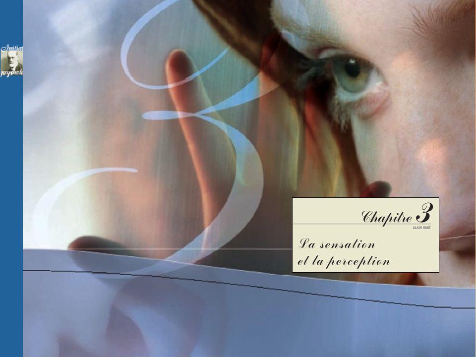 Chapitre 3 La sensation et la perception INTRODUCTION : SENSATION VERSUS PERCEPTION 3.1 LA SENSATION : MATIÈRE PREMIÈRE DE LA PERCEPTION 3.2 LA PERCEPTION Privation sensorielle Adaptation sensorielle