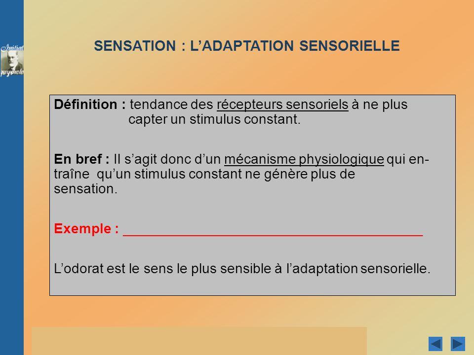 © Groupe Beauchemin éditeur 2005 - Conception et réalisation de Pierre CLOUTIER et Guy PARENT 3.2 LA PERCEPTION 3.2.1 LA SÉLECTION DE LINFORMATION LA DÉTECTION DES SIGNAUX LATTENTION SÉLECTIVE LAUTOMATISATION ET LA PERCEPTION SUBLIMINALE LHABITUATION (VS LADAPTATION SENSORIELLE) 3.2.2 LORGANISATION DES SENSATIONS 3.2.3LINTERPRÉTATION DES INFORMATIONS SENSORIELLES