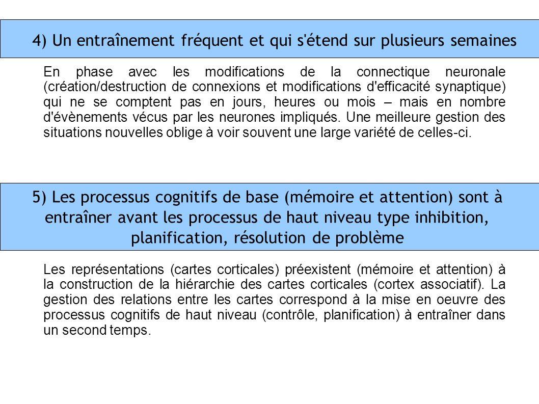 4) Un entraînement fréquent et qui s'étend sur plusieurs semaines En phase avec les modifications de la connectique neuronale (création/destruction de