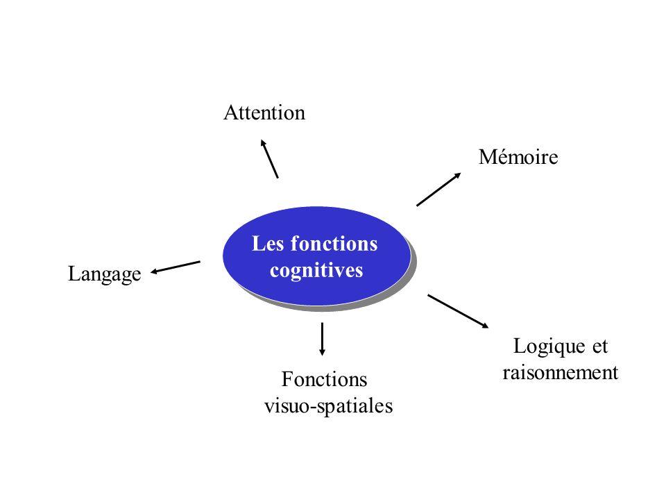 Les fonctions cognitives Les fonctions cognitives Mémoire Attention Langage Logique et raisonnement Fonctions visuo-spatiales