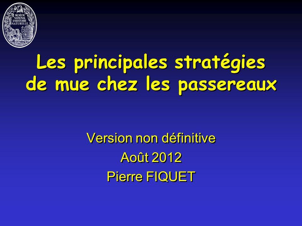 Les principales stratégies de mue chez les passereaux Version non définitive Août 2012 Pierre FIQUET Version non définitive Août 2012 Pierre FIQUET
