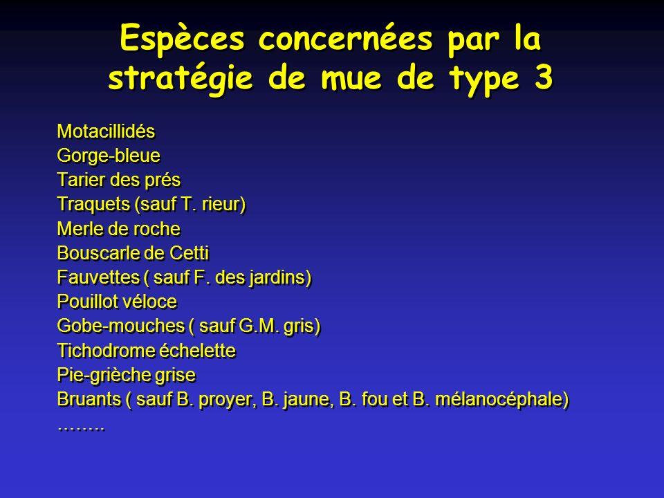 Espèces concernées par la stratégie de mue de type 3 Motacillidés Gorge-bleue Tarier des prés Traquets (sauf T.