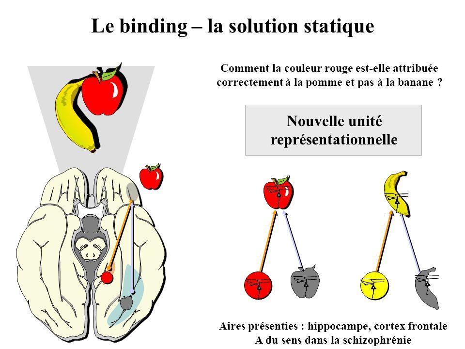 Nouvelle unité représentationnelle Le binding – la solution statique Comment la couleur rouge est-elle attribuée correctement à la pomme et pas à la b
