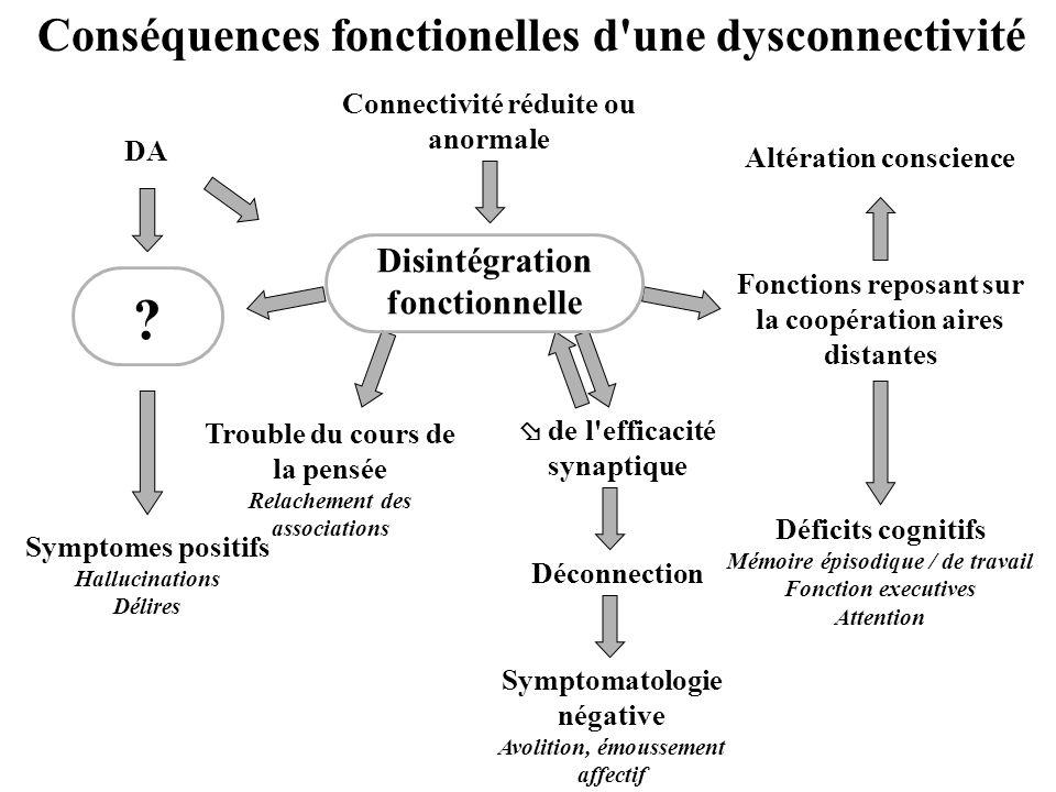 Conséquences fonctionelles d'une dysconnectivité Fonctions reposant sur la coopération aires distantes Trouble du cours de la pensée Relachement des a