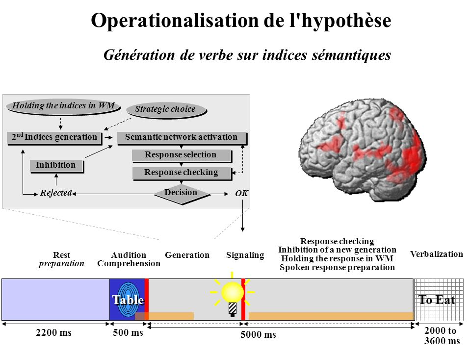 Operationalisation de l hypothèse Génération de verbe sur indices sémantiques Table 2200 ms500 ms 5000 ms 2000 to 3600 ms To Eat Rest preparation Audition Comprehension Response checking Inhibition of a new generation Holding the response in WM Spoken response preparation Signaling Verbalization Generation Semantic network activation Response selection Response checking Decision OK Rejected Inhibition 2 nd Indices generation Strategic choice Holding the indices in WM