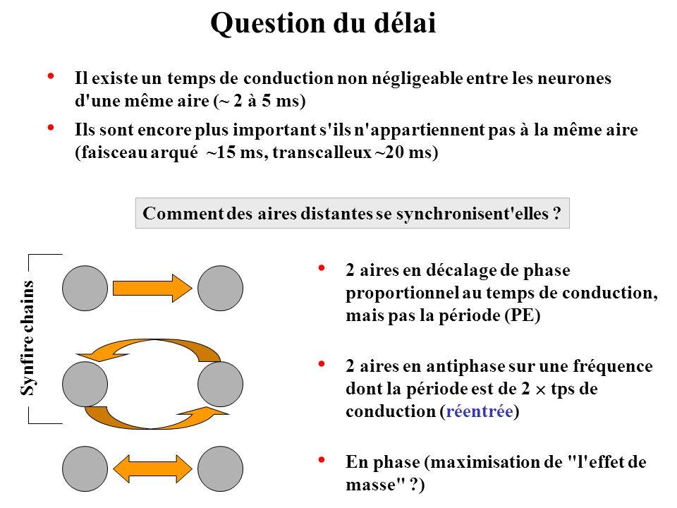 Question du délai Il existe un temps de conduction non négligeable entre les neurones d'une même aire (~ 2 à 5 ms) Ils sont encore plus important s'il