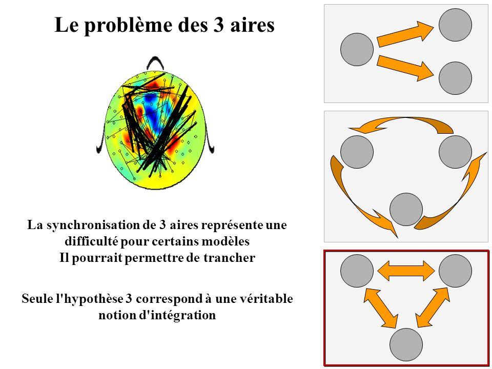 Le problème des 3 aires La synchronisation de 3 aires représente une difficulté pour certains modèles Il pourrait permettre de trancher Seule l'hypoth