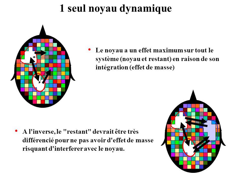 1 seul noyau dynamique Le noyau a un effet maximum sur tout le système (noyau et restant) en raison de son intégration (effet de masse) A l'inverse, l