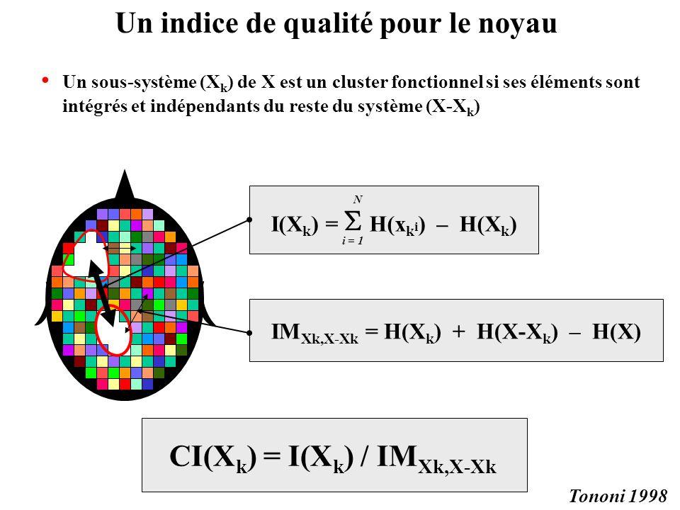 Un sous-système (X k ) de X est un cluster fonctionnel si ses éléments sont intégrés et indépendants du reste du système (X-X k ) CI(X k ) = I(X k ) /