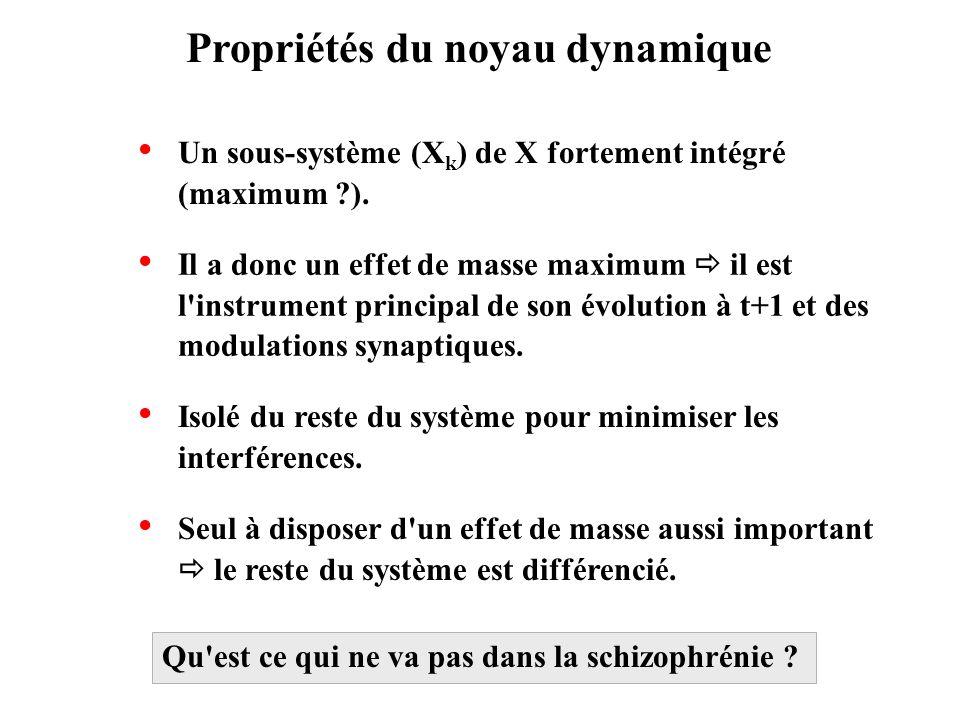 Propriétés du noyau dynamique Un sous-système (X k ) de X fortement intégré (maximum ?). Il a donc un effet de masse maximum il est l'instrument princ