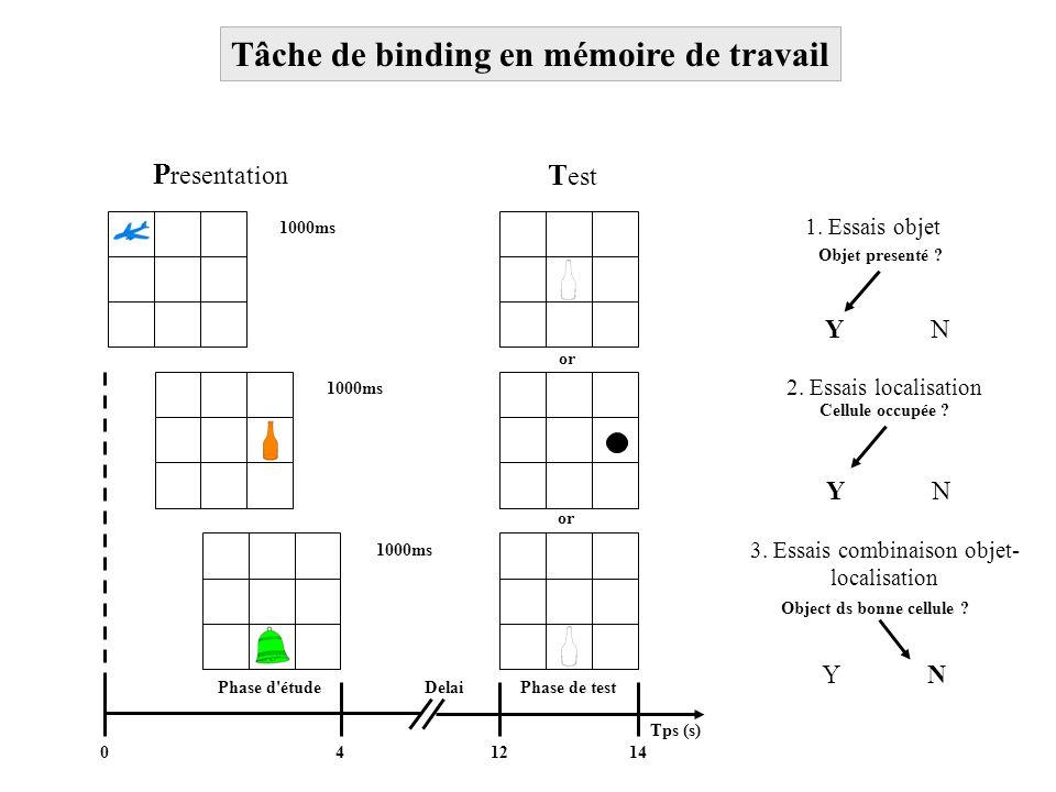 Tâche de binding en mémoire de travail 1000ms Phase d'étudePhase de test Tps (s) or T est YNYN Delai 1. Essais objet 2. Essais localisation 3. Essais