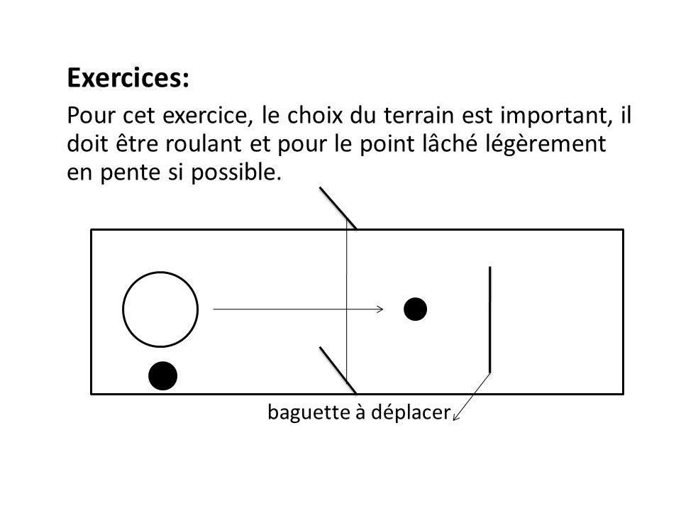 Exercices: Pour cet exercice, le choix du terrain est important, il doit être roulant et pour le point lâché légèrement en pente si possible.