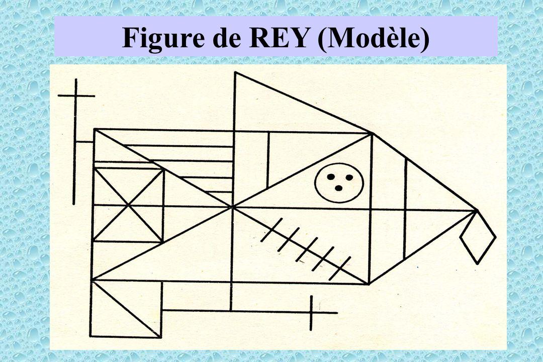 Figure de REY (Modèle)