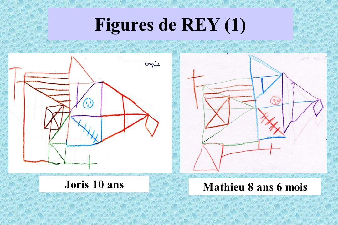 Figures de REY (1) Mathieu 8 ans 6 mois Joris 10 ans