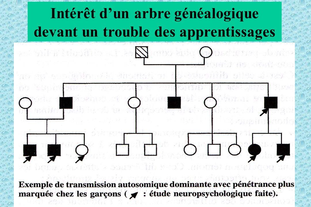 Intérêt dun arbre généalogique devant un trouble des apprentissages